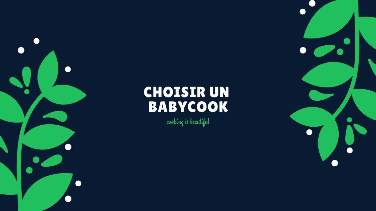 comment choisir un babycook
